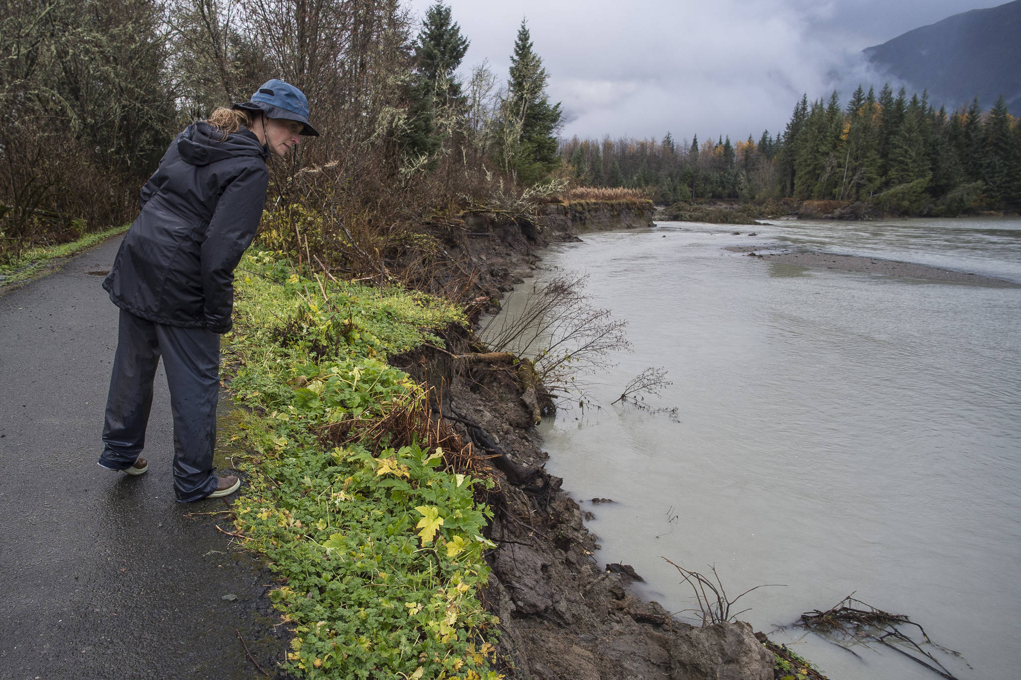 Sonia Nagorski, assistant professor of Geology Arts and Sciences at the University of Alaska Southeast, investigates erosion below the broken oxbow along the Mendenhall River on Wednesday, Oct. 17, 2018. The river cut through the meander bend just north of the Brotherhood Bridge last this summer. (Michael Penn | Juneau Empire)