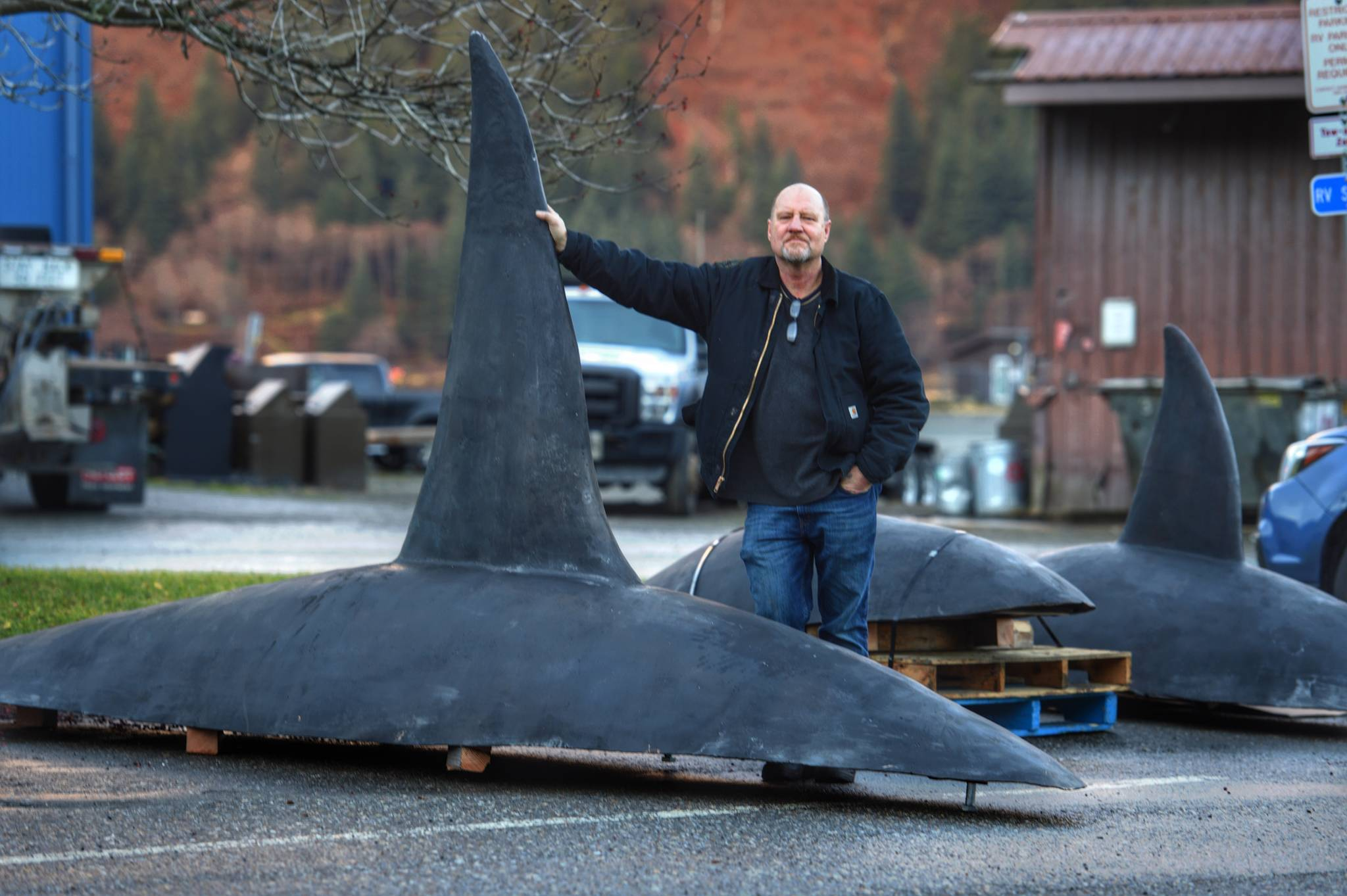 Meet 'The Pod': Orca sculptures destined for Douglas Fish & Game Building