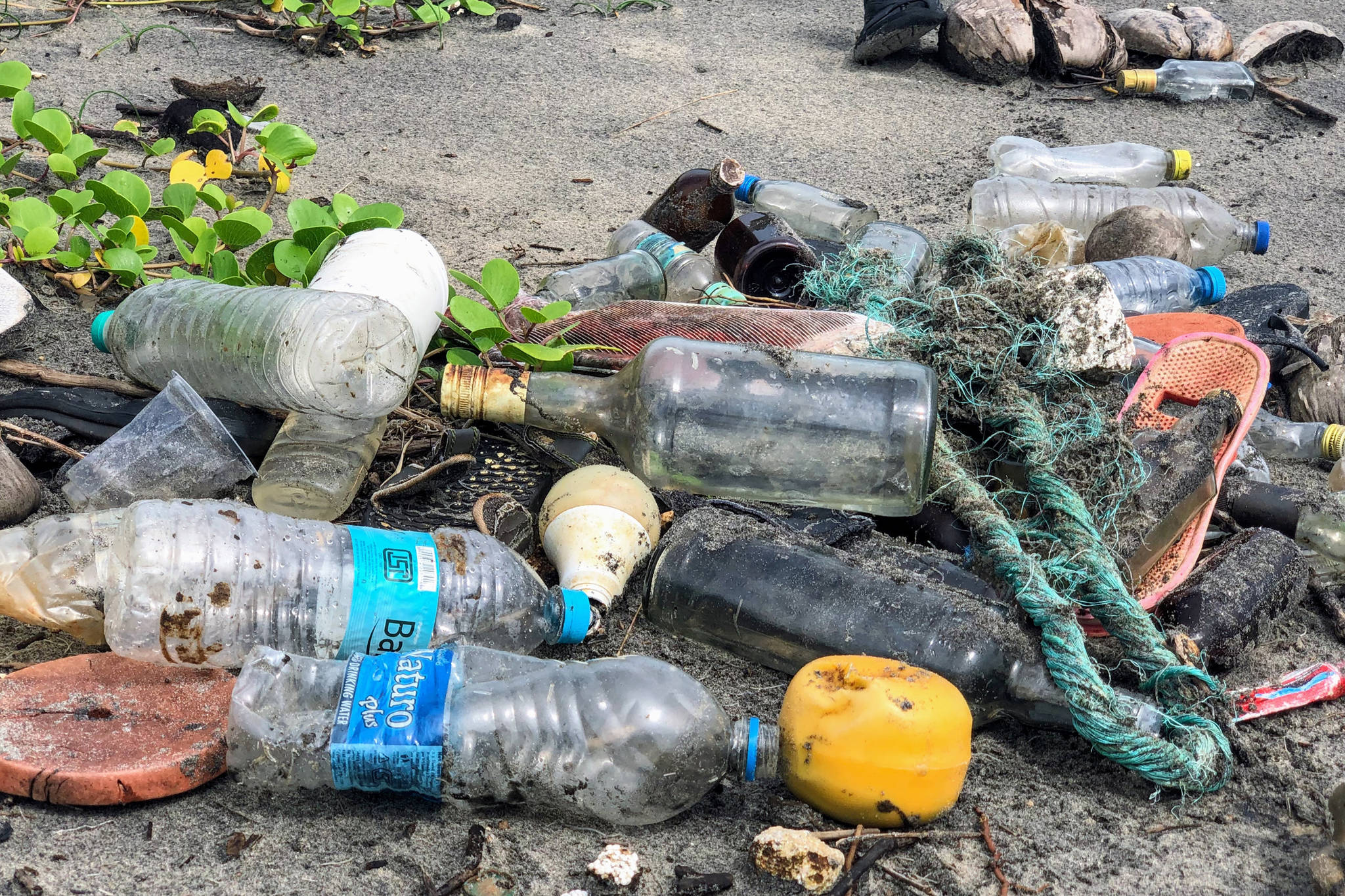 Remembering the effects of plastics