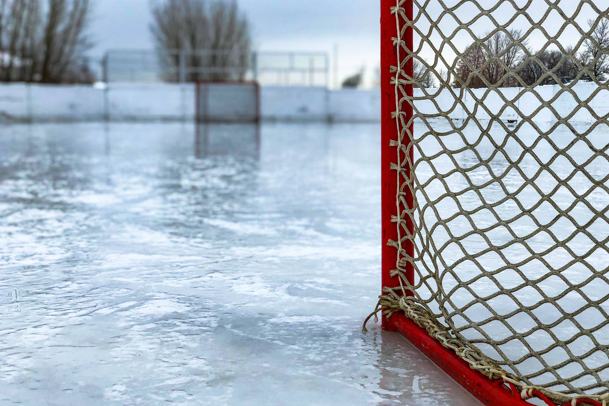 Capitals fall to Blue Devils in comp hockey action