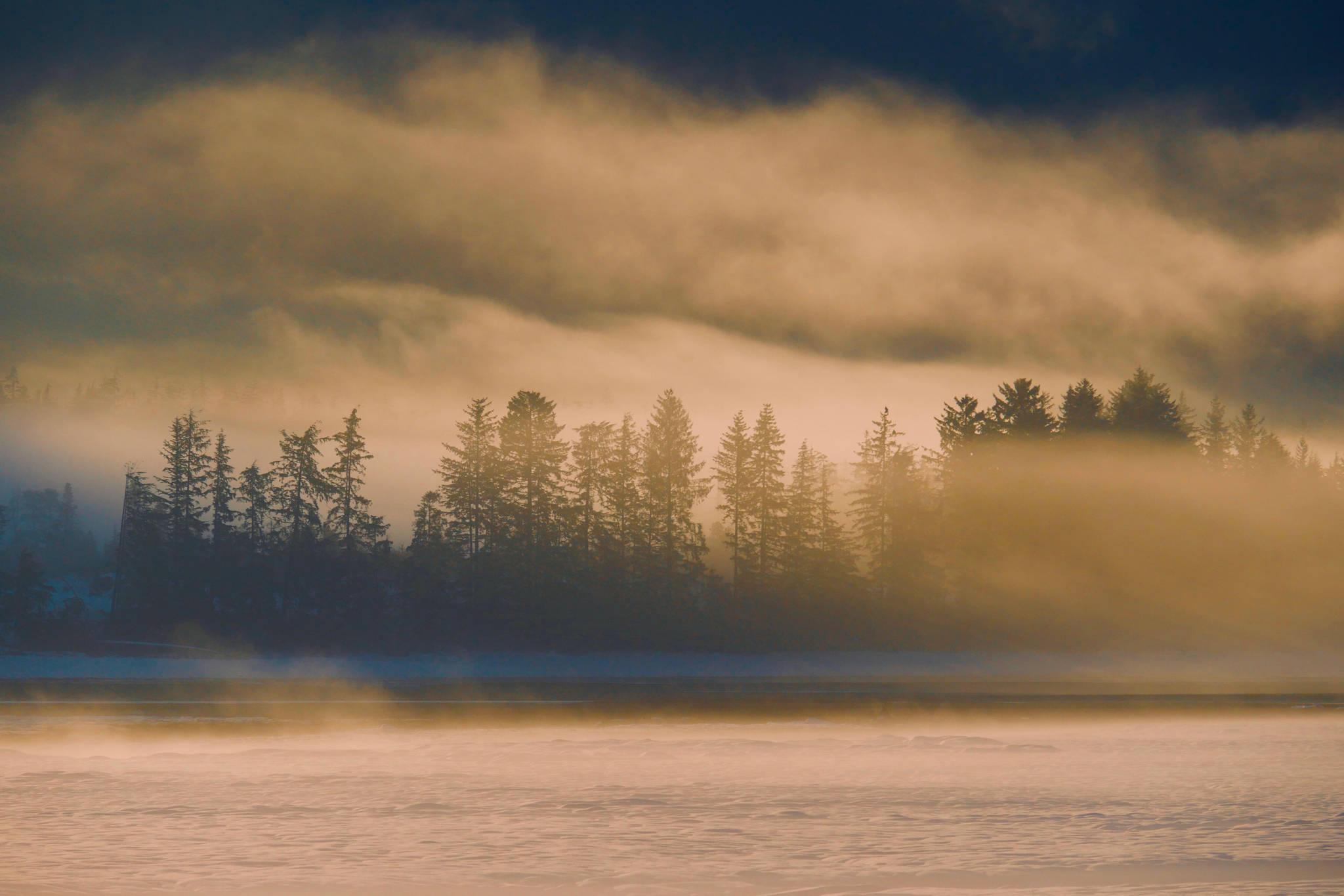 Fog drapes across the Mendenhall Wetlands. (Courtesy Photo | Janine Reep)