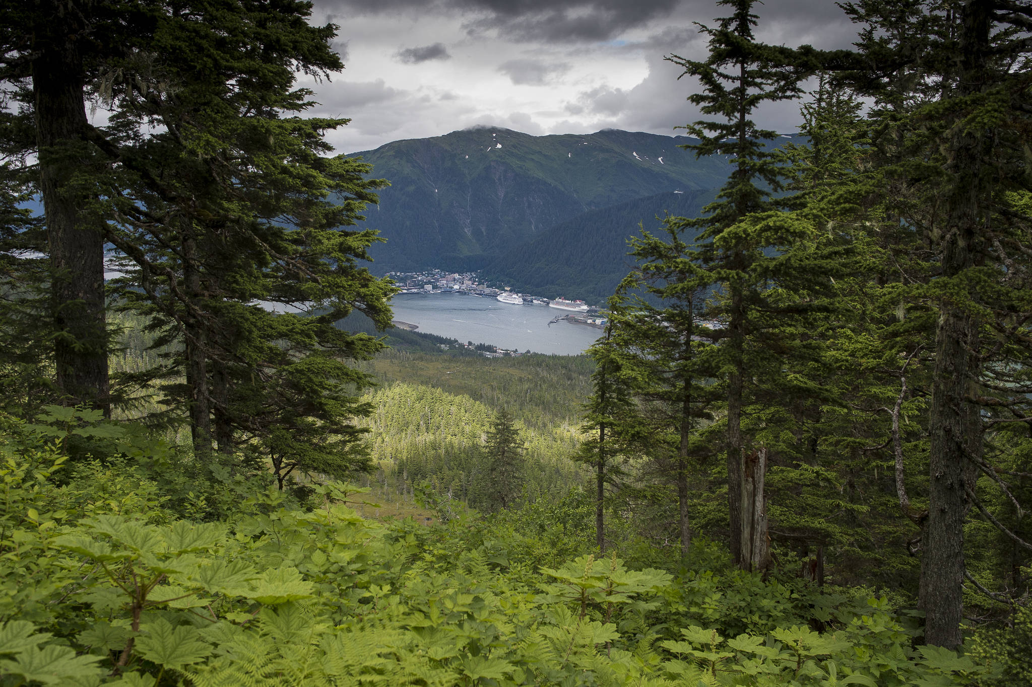 Downtown Juneau as seen from the Mt. Bradley Trail in July 2017. (Michael Penn | Juneau Empire File)