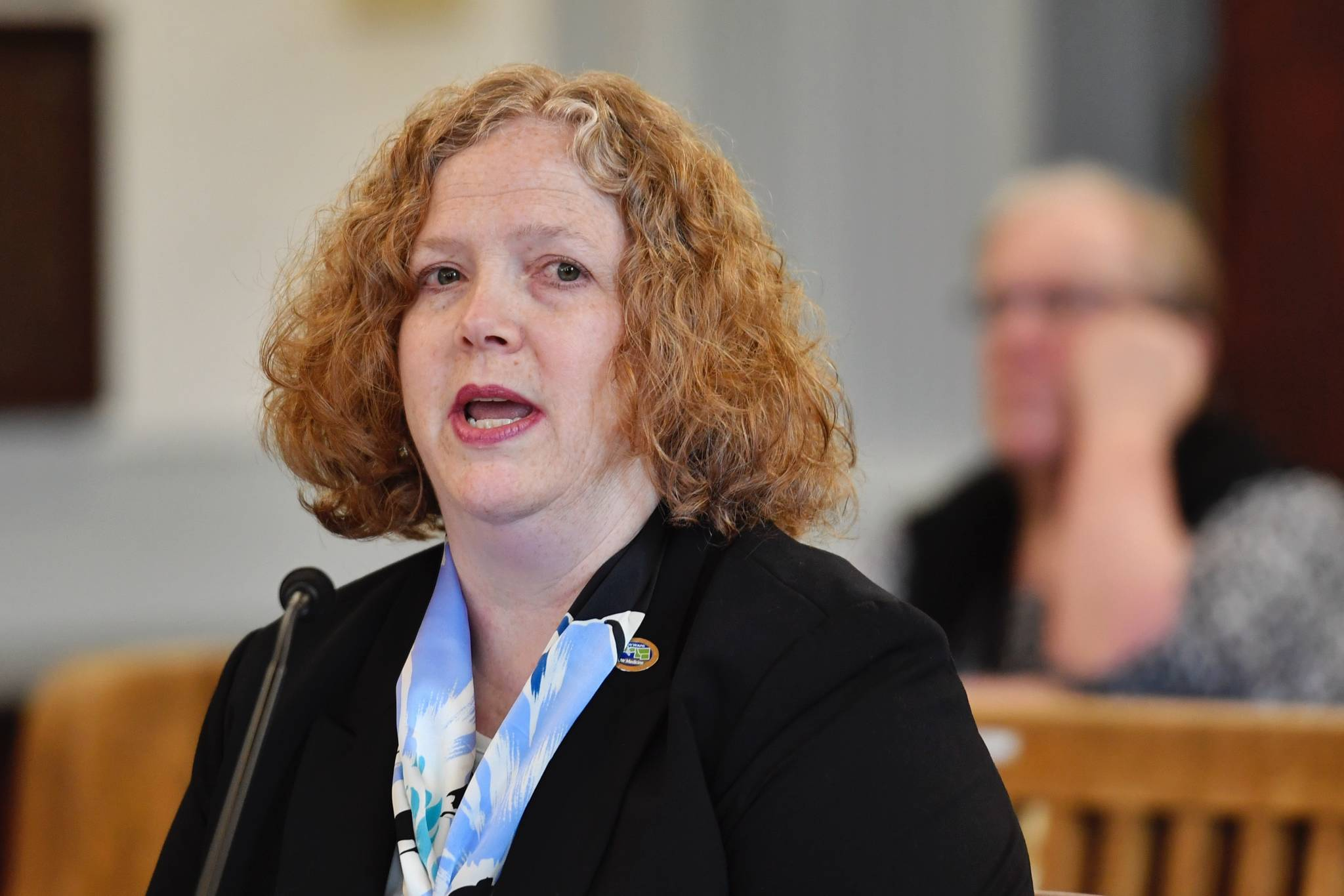 Dr. Suzanne Allen, from Boise, Idaho, gives an overview of the WWAMI School of Medical Education program to the Senate Finance Committee at the Capitol on Monday, March 25, 2019. (Michael Penn | Juneau Empire)
