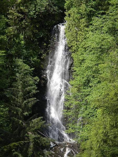 Rainbow Falls in Wrangell is a beautiful place to harvest numerous wild edibles. (Courtesy Photo | Vivian Mork Yéilk')