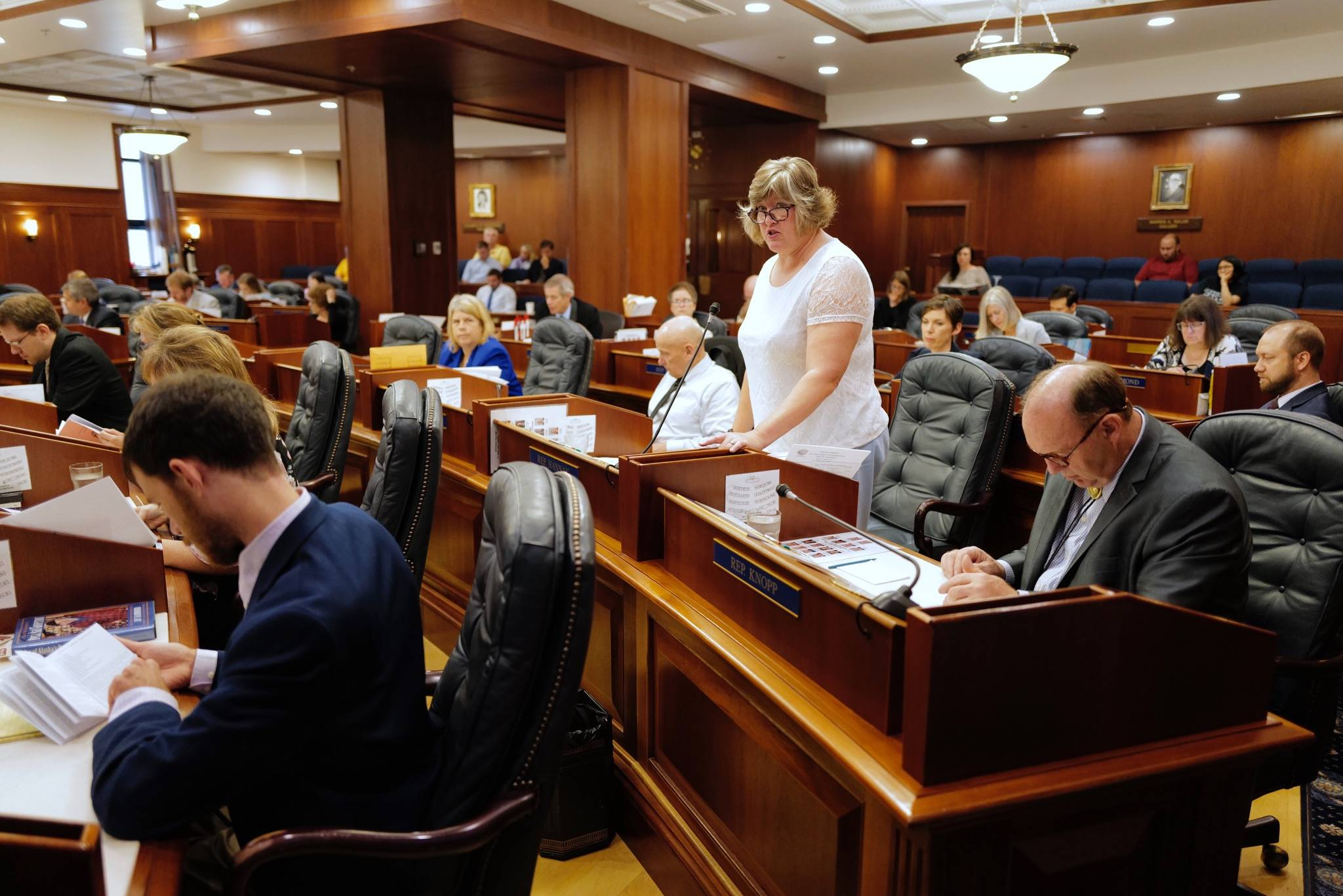 Rep. Sara Hannan, D-Juneau, speaks in favor of HB 2002 on a reconsideration vote at the Capitol on Monday, July 22, 2019. (Michael Penn | Juneau Empire)