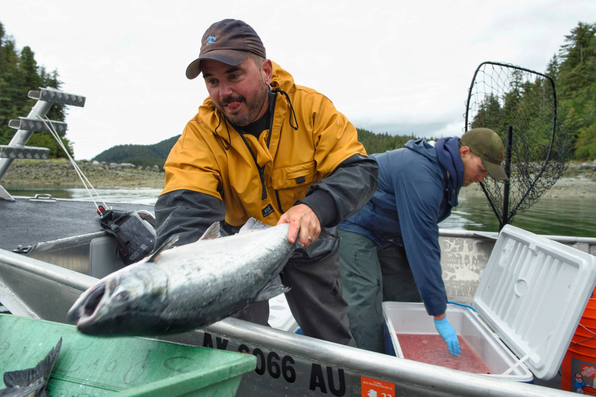 John Bohan, left, and Dusty Riesterer offload a dozen coho at the Golden North Salmon Derby's station at Amalga Harbor on Saturday, Aug. 24, 2019. (Michael Penn | Juneau Empire)