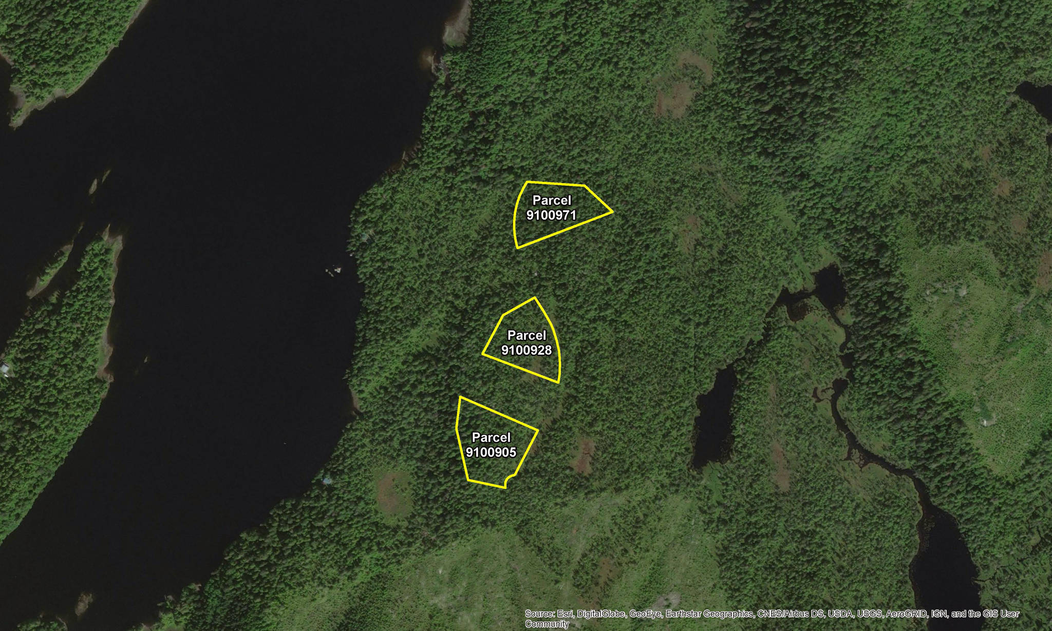 A photo from the Alaska Mental Health Trust Authority website showing an aerial view of the parcels of land for sale during the Fall Land Sale near the Upper George Inlet northwest of Ketchikan. (Courtesy photo)