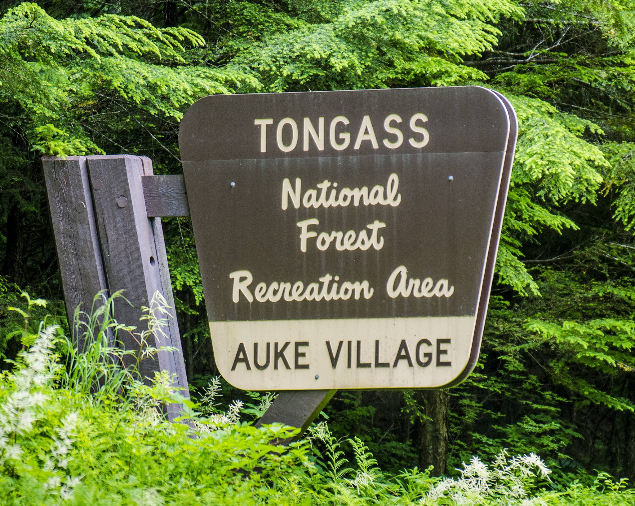 The Tongass National Forest sign stands near the Auke Village Recreation Area. (Juneau Empire File)