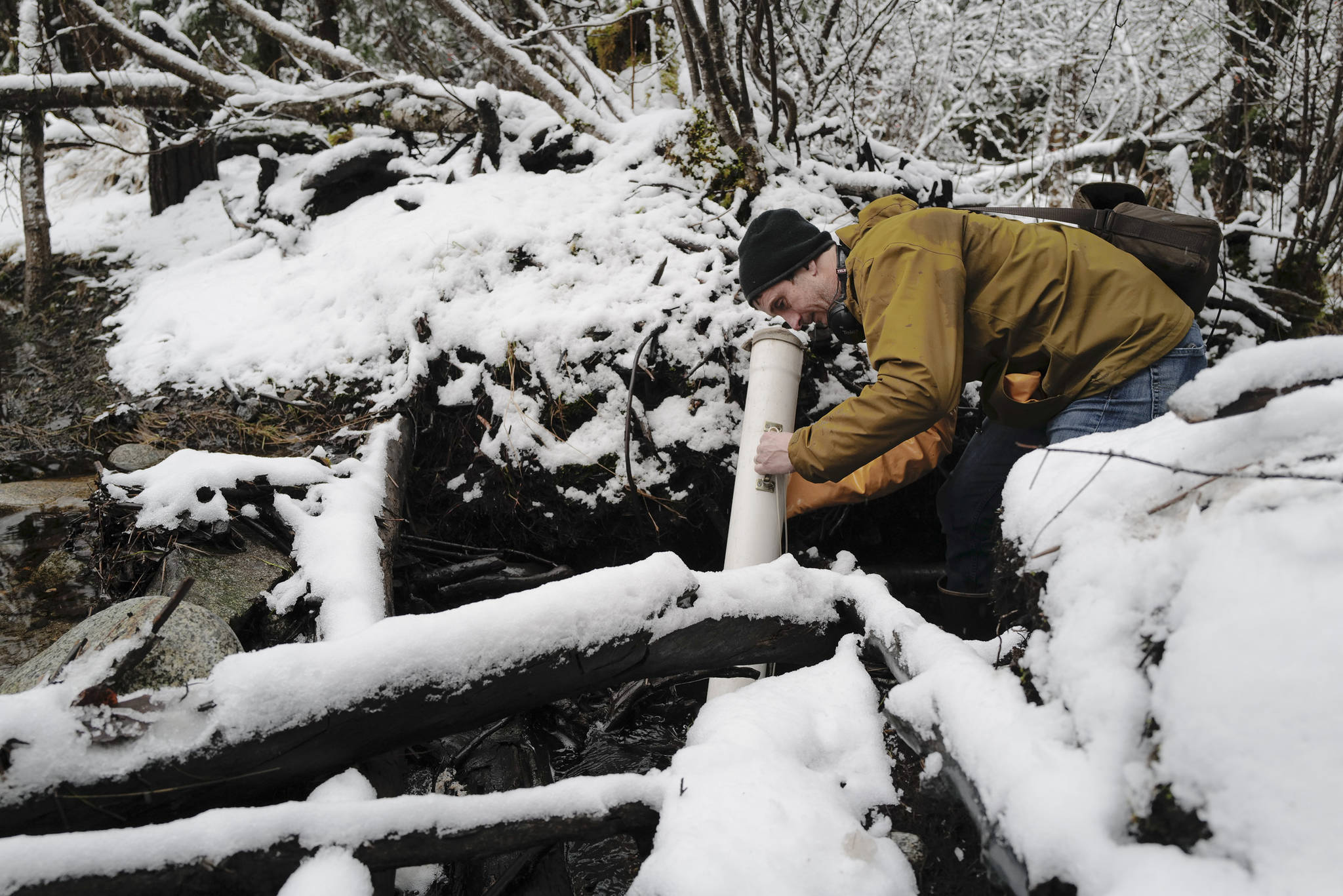 Jake Musslewhite, a fisheries biologist with the U.S. Forest Service, searches for a radio tag used in a study tracking adult coho salmon in the Dredge Lakes drainage system. (Michael Penn | Juneau Empire)