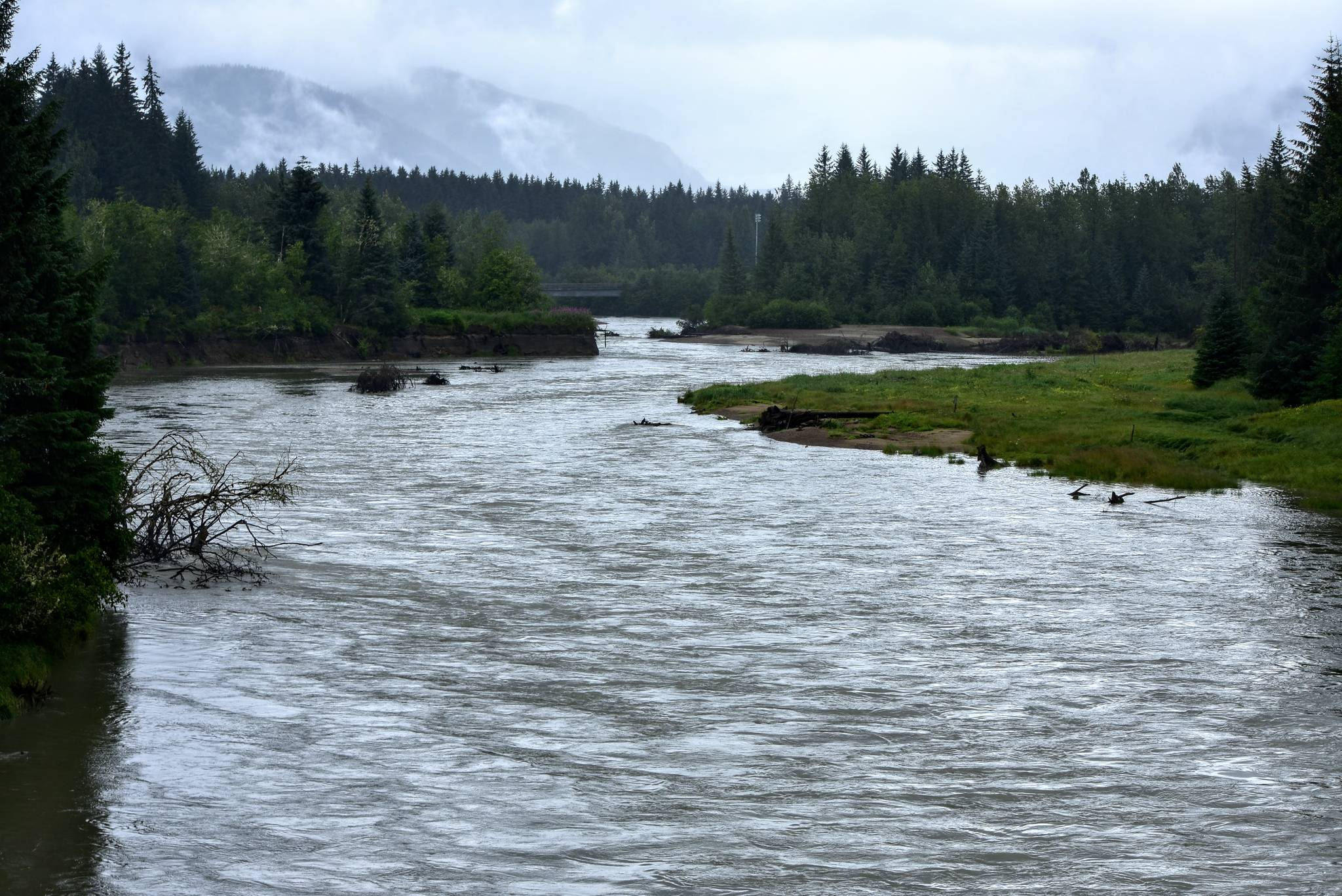 Peter Segall / Juneau Empire                                 The banks of the Mendenhall River were high on Sunday, July 26, 2020. National Weather Service is monitoring the river's potentially dangerous water level rise.