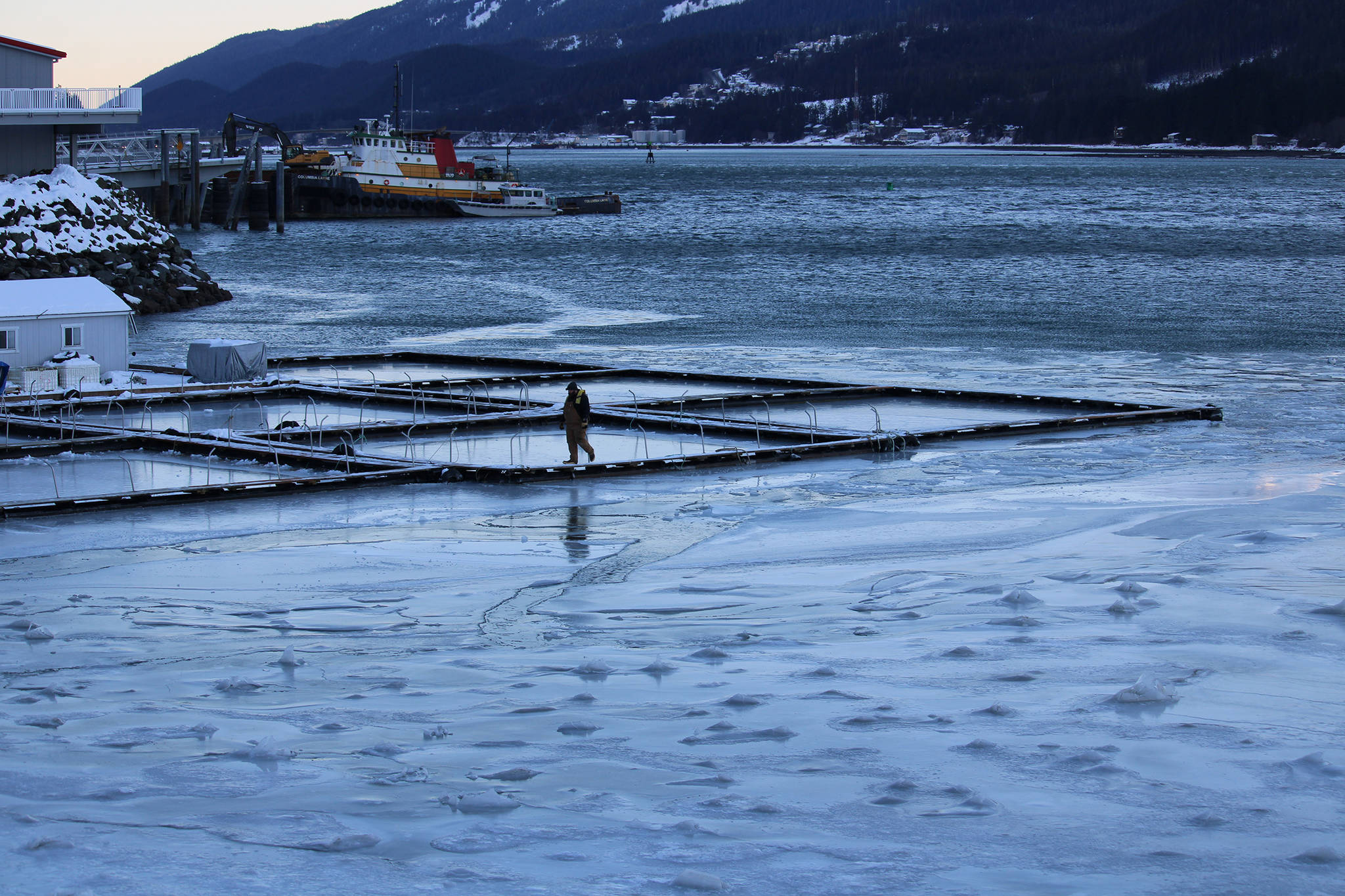 A worker walks on the pier near Douglas Island Pink and Chum Inc's Macaulay Salmon Hatchery Thursday afternoon. Ice has formed on the Gastineau Channel amid frigid temperatures brought on by a high pressure ridge over mainland Alaska and Western Canada. (Dana Zigmund / Juneau Empire)