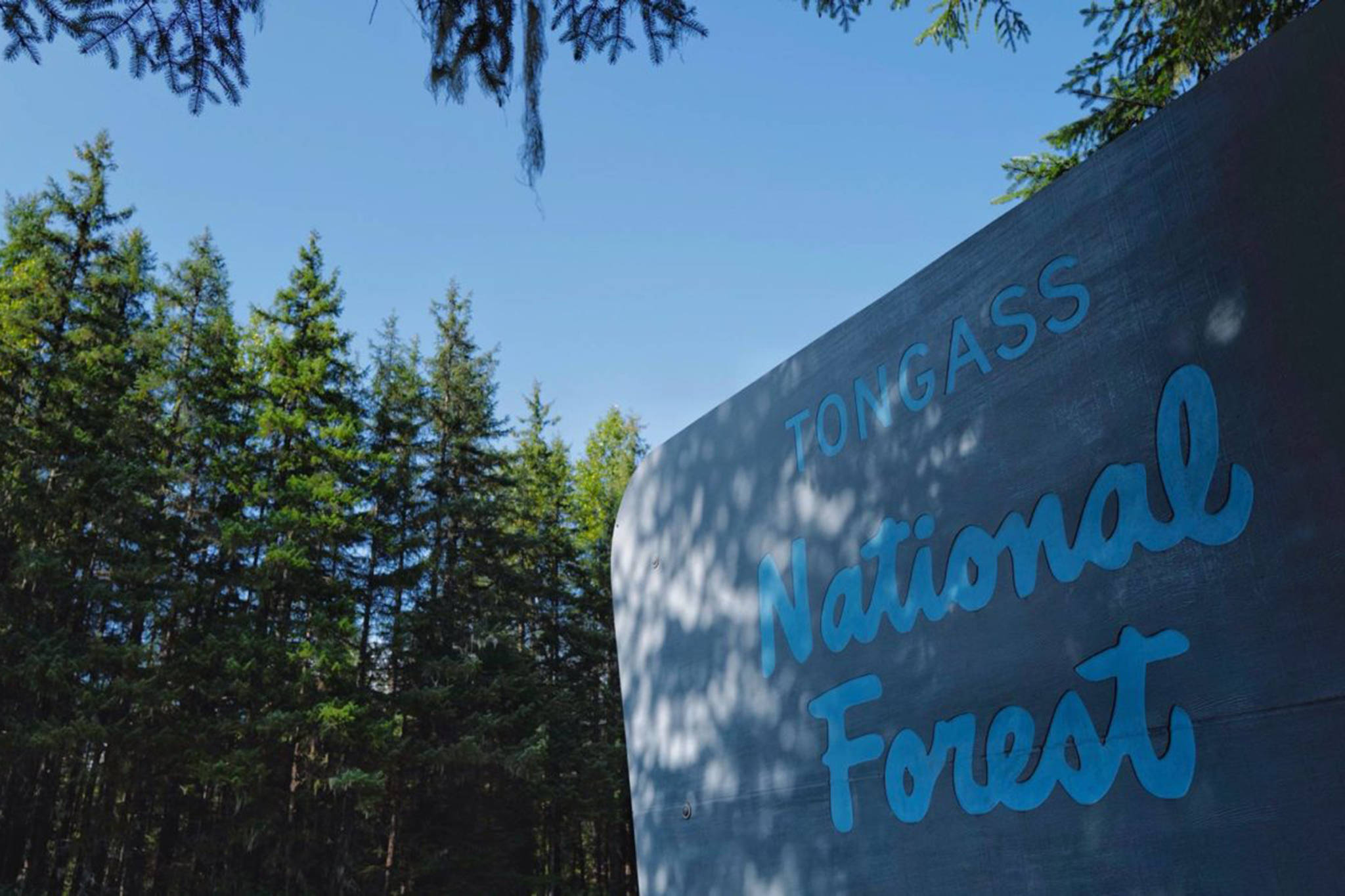 The Tongass National Forest sign seen en route to the Mendenhall Glacier Visitor Center on Wednesday, Aug. 28, 2019. (Michael Penn / Juneau Empire File)
