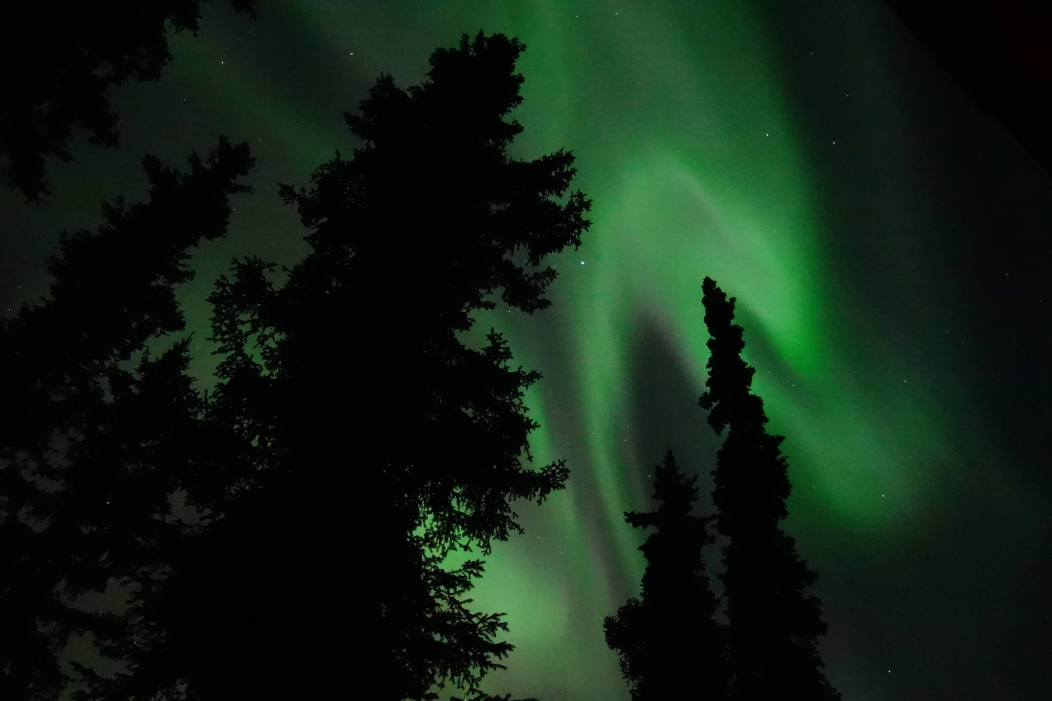 This photo shows the aurora borealis over Fairbanks. To a large degree, the Geophysical Institute at the University of Alaska Fairbanks owes its existence to the aurora. (Courtesy Photo / Ned Rozell)