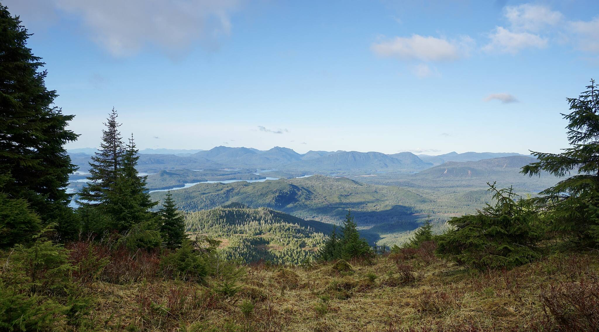 This photo shows a sweeping view of Prince of Wales Island on Oct. 17. (Courtesy Photo / Marti Crutcher)